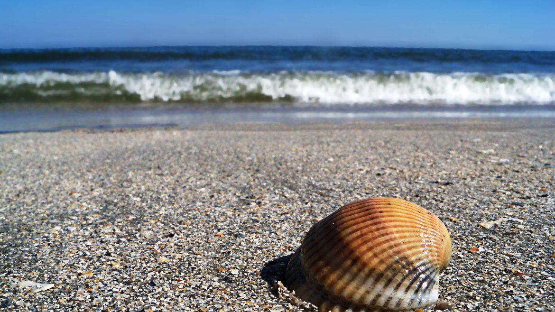 Mamaia, The Black Sea Pearl