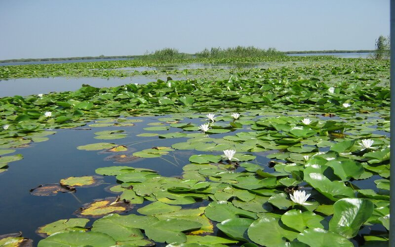 danube delta destinations