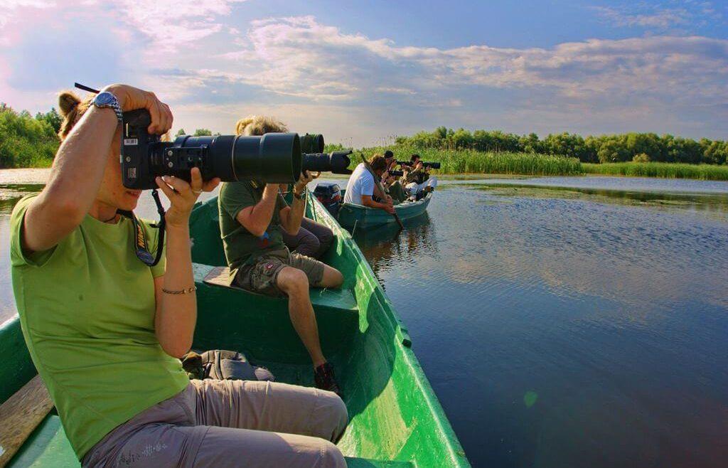 birdwatching danube delta