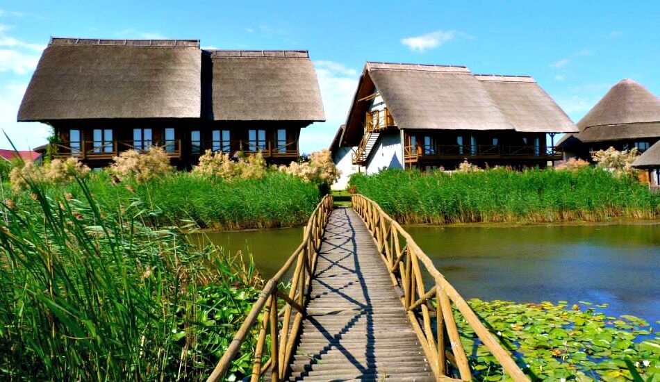 Yoga in the Danube Delta