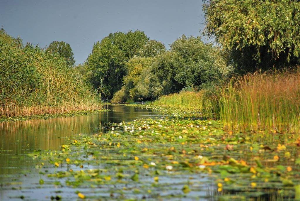 Danube Delta one day tour