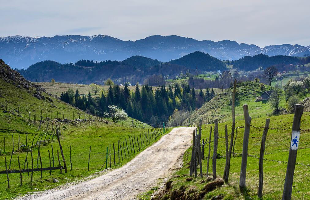Sirnea Trasnylvania villages