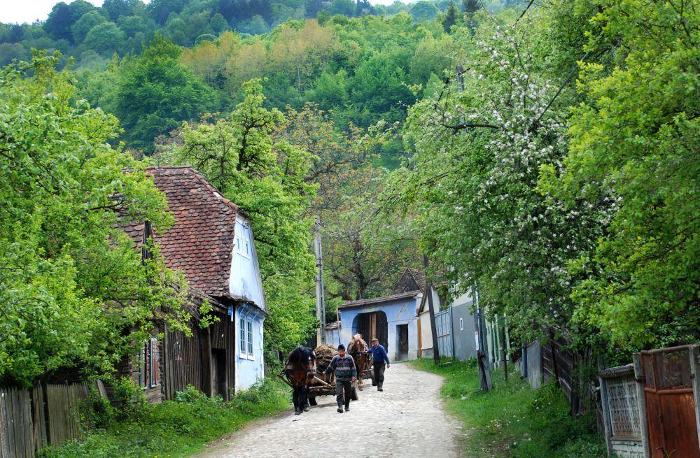 Romania destinations Foodie Tours
