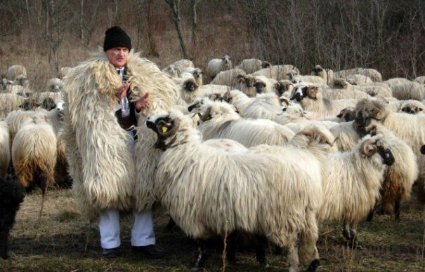 Romania destinations rural Romania