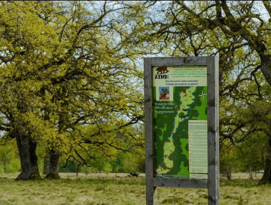 Sighisoara wildlife tours